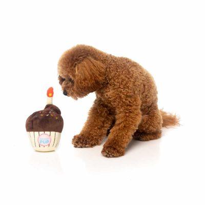 fuzzyard-cupcake-with-dog2