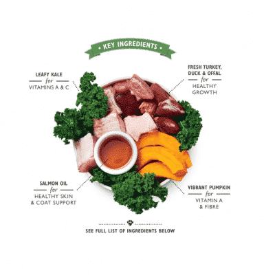 lilys-kitchen-turkey-duck-puppy-recipe