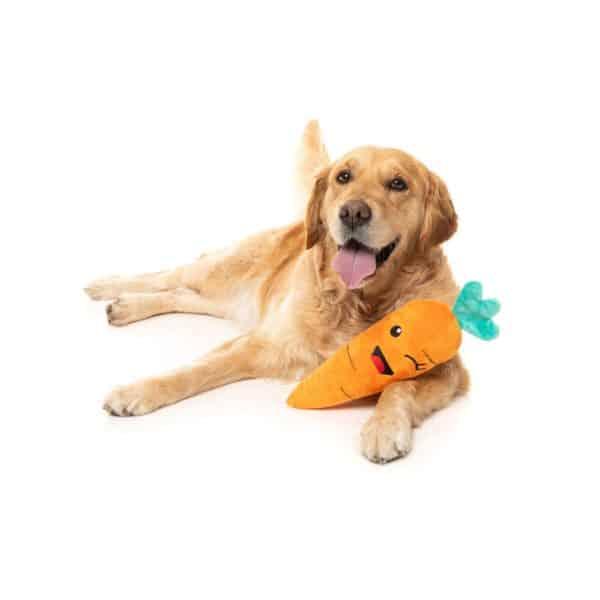 Fuzzyard Winky Carrot with Labrador