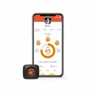 PitPat Mobile App