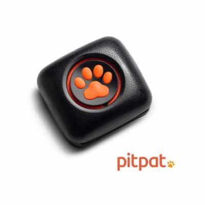 PitPt Dog Activity Monitor