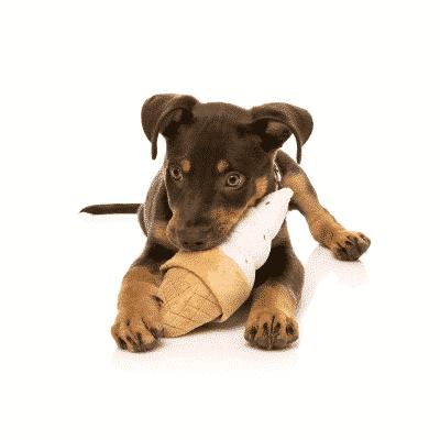 Fuzzyard Ice Cream Dog Toy lifestyle shot with dog